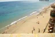 Sale - Apartments - Arenales del Sol