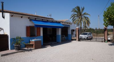 Country Property - Sale - Elche - Elche
