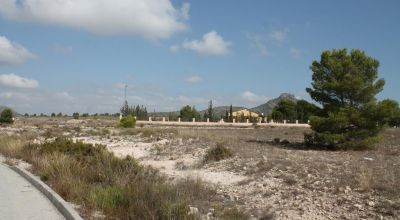 Land - Sale - Salinas - Salinas