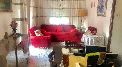 Apartments - Sale - Elche - Elche