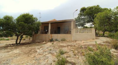 Country Property - Sale - Crevillente - Crevillente