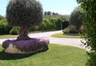 Sale - Country Property - Benimarfull